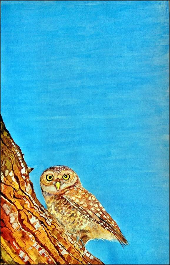 Owl Painting - Awake by Sonali Sengupta