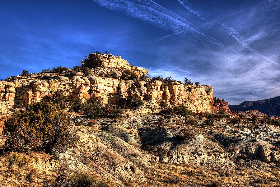 Awakening Desert by Chuck Summers