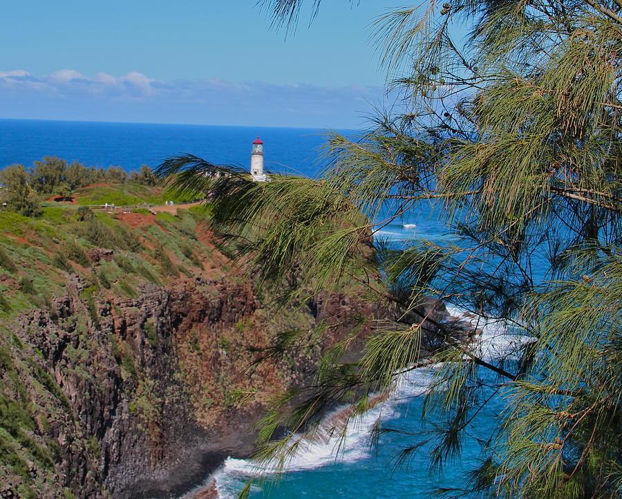 Kauai Photograph - Awesome by Kimberly Davidson