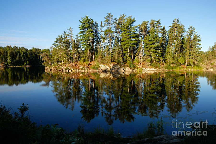Nature Photograph - Awesub Morning 2 by Larry Ricker