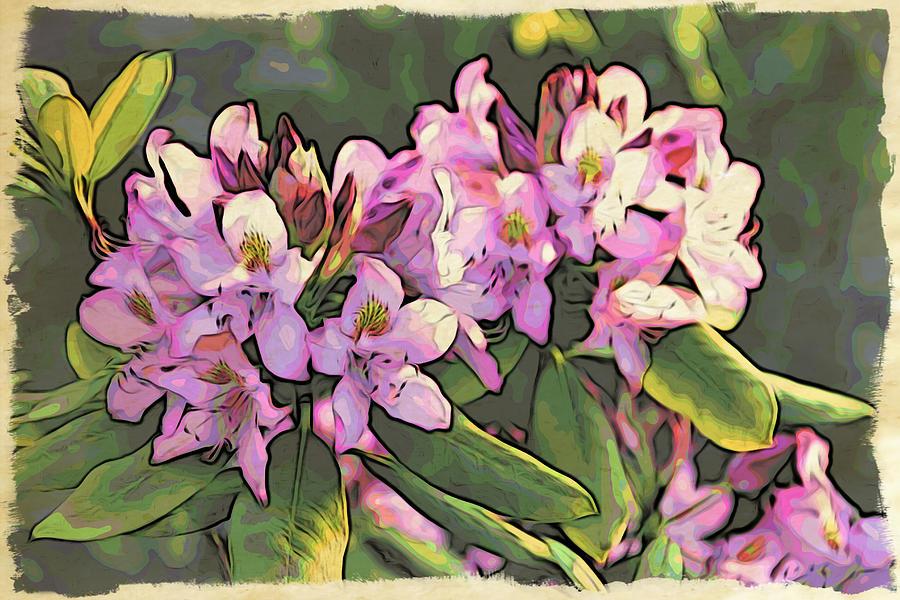Azaleas Photograph - Azalea Art by Alice Gipson
