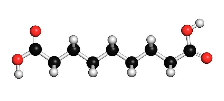 Acid Photograph - Azelaic Acid Nonanedioic Acid Molecule by Molekuul
