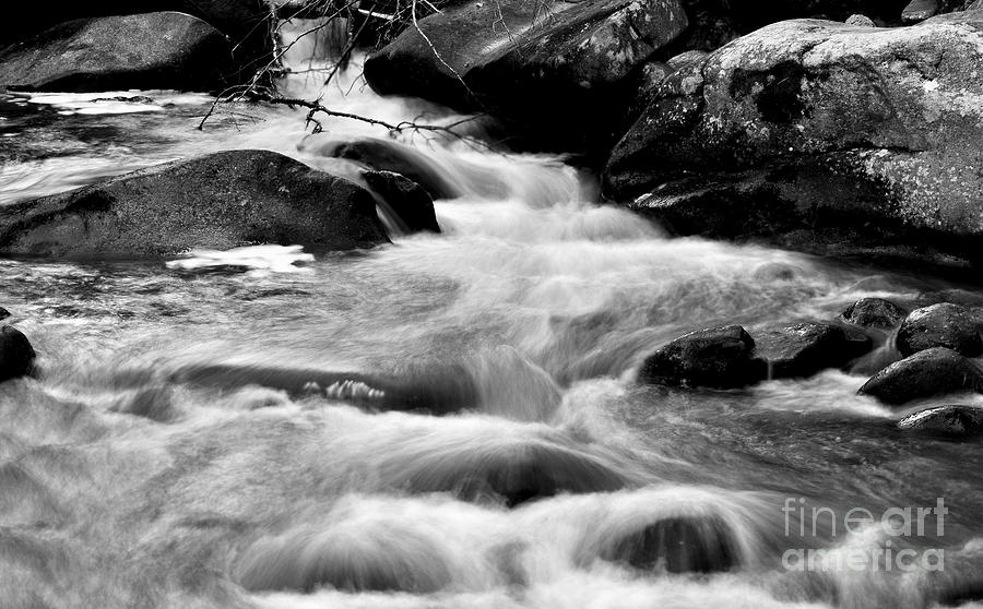 Babbling Brook in Motion Black and White by Staci Bigelow