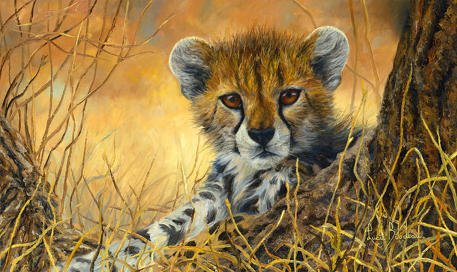 baby cheetah painting by lucie bilodeau
