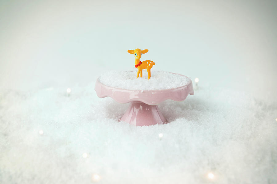 Baby Deer On A Snowy Landscape Photograph by Mieke Dalle