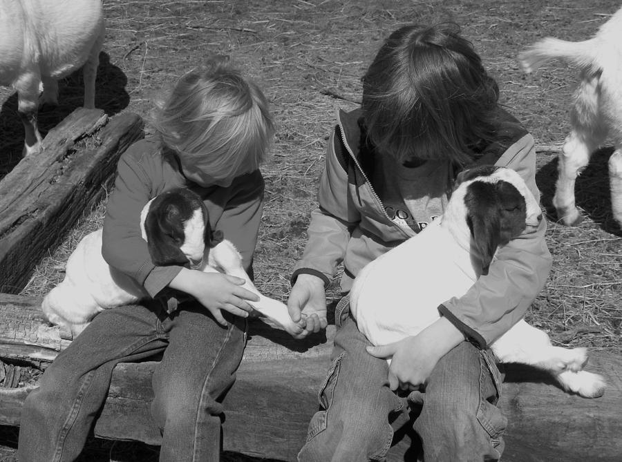 Kid Photograph - Baby Feet by Sheri Lauren Schmidt