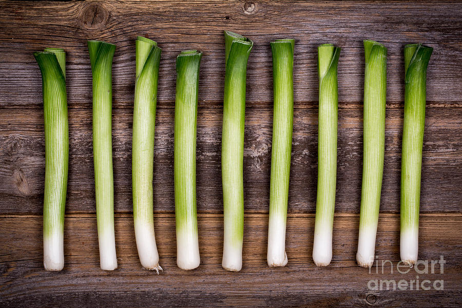 Agriculture Photograph - Baby Leeks Vintage by Jane Rix