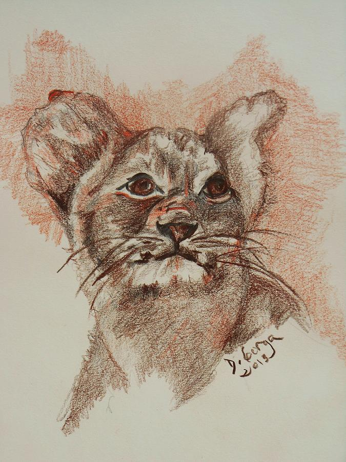 Wild Animals Drawing - Baby Lion by Deborah Gorga