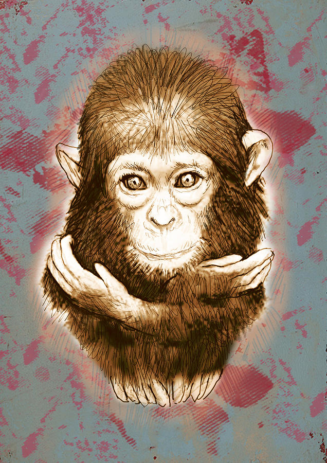 portraits drawing baby monkey stylised drawing art poster by kim wang