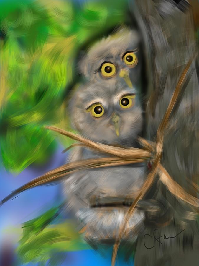 Baby Owls by Christine Fournier