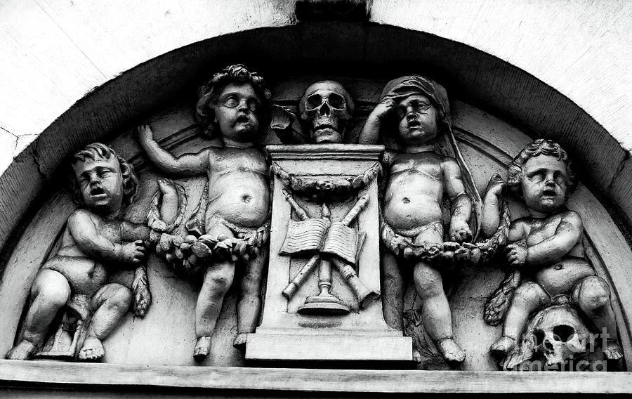 Skulls Photograph - Baby Skulls by John Rizzuto