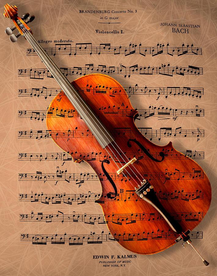 Cello Photograph - Bach On Cello by Sheryl Cox