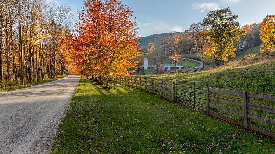 Bucolic Photograph - Back Roads by Bill Wakeley