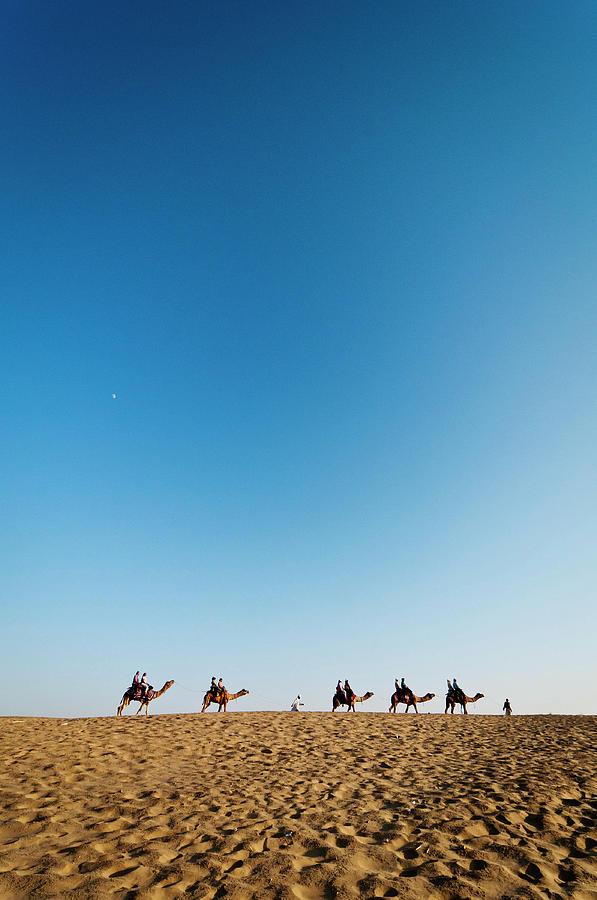Back To Home At Jaisalmer, Rajasthan Photograph by Sudharshun Gopalan