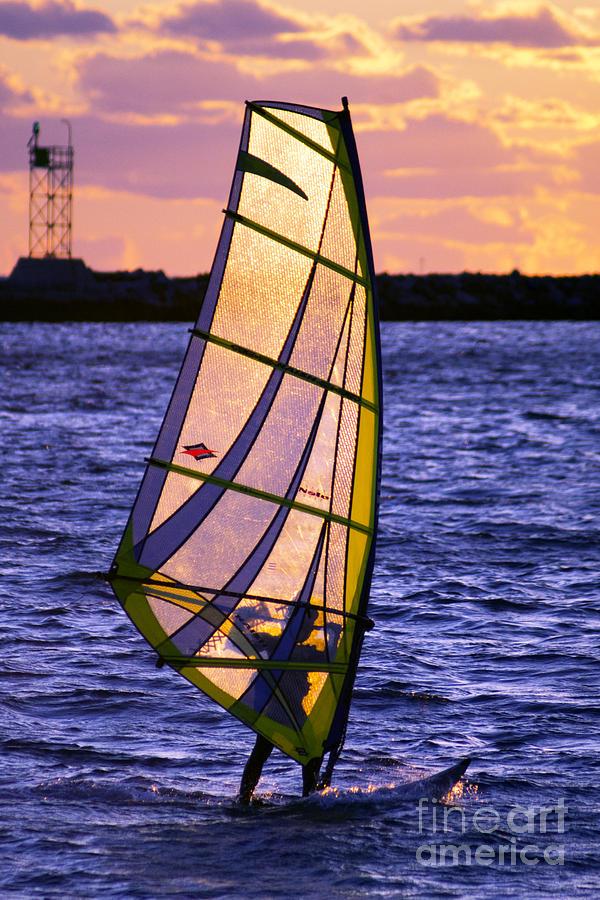 Wind Photograph - Backlight by Joe Geraci