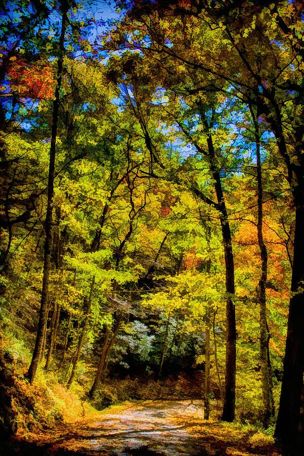 Great Smoky Mountains National Park Painting - Backroads Of The Great Smoky Mountains National Park by John Haldane