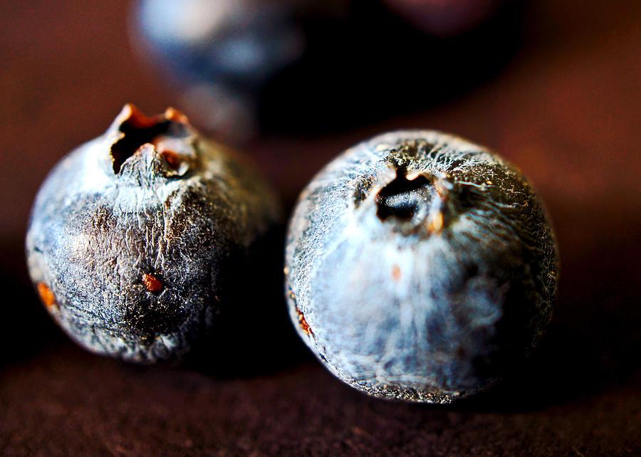 Bad Berries Photograph By Brandon Montgomery