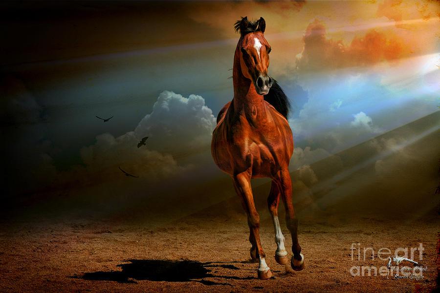 Equine Photograph - Badawi by Karen Slagle