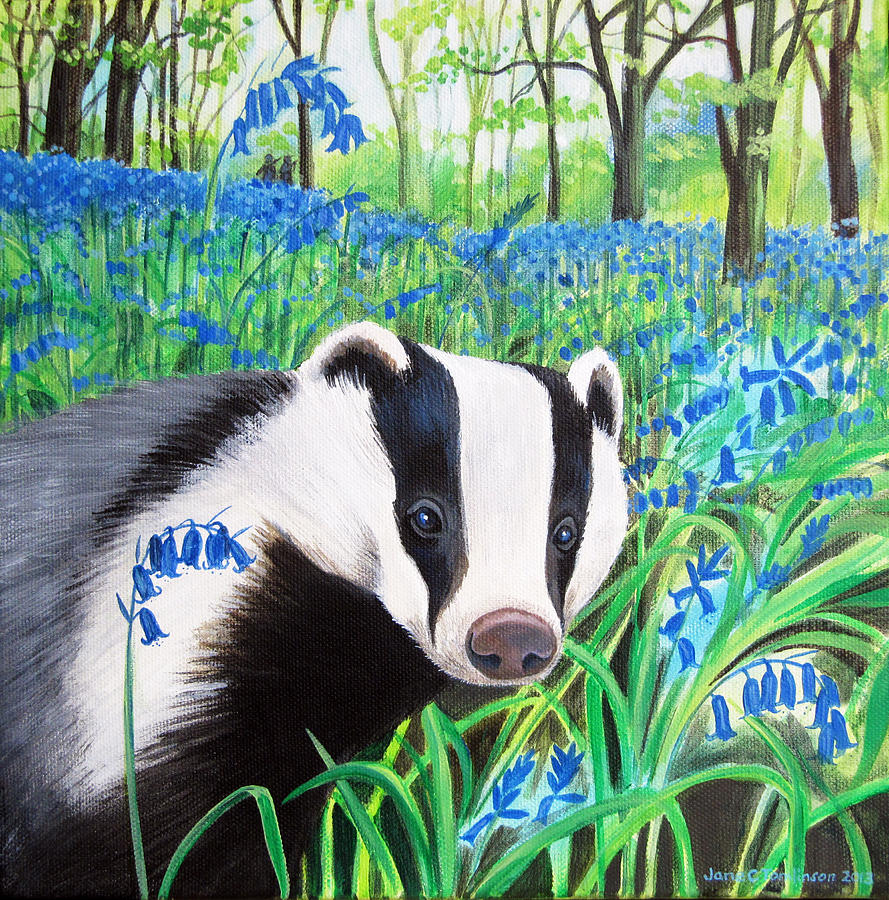 Badger Painting - Badger and bluebells by Jane Tomlinson