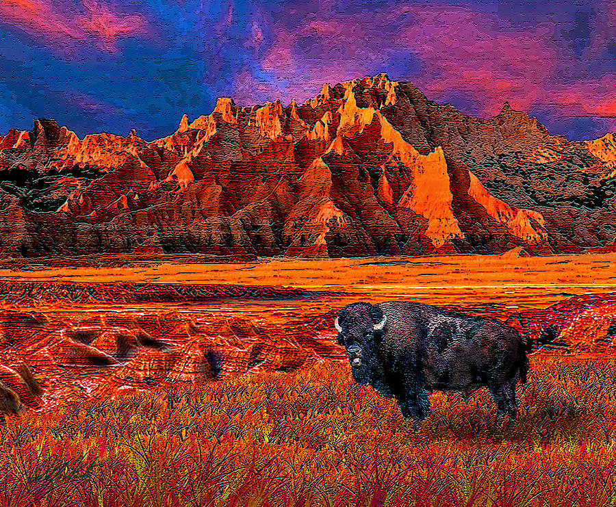 Badlands Bison American Icon Photograph