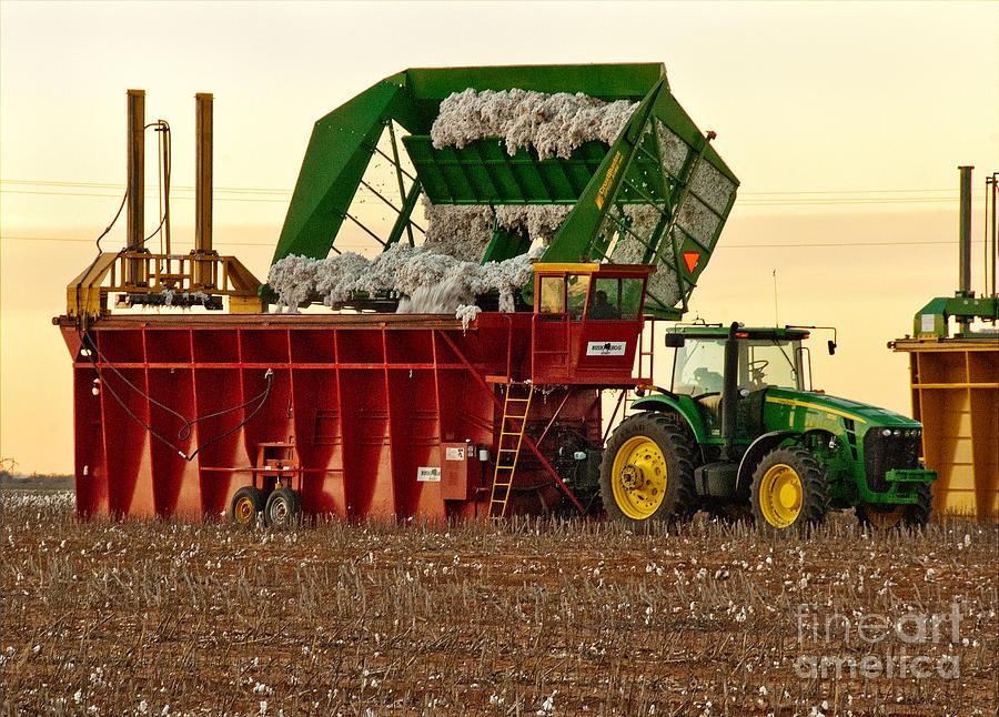 Digital Images Photograph - Bailing Cotton by Mae Wertz