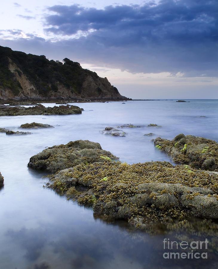 Australia Photograph - Balcombe Point Mount Martha by Tim Hester