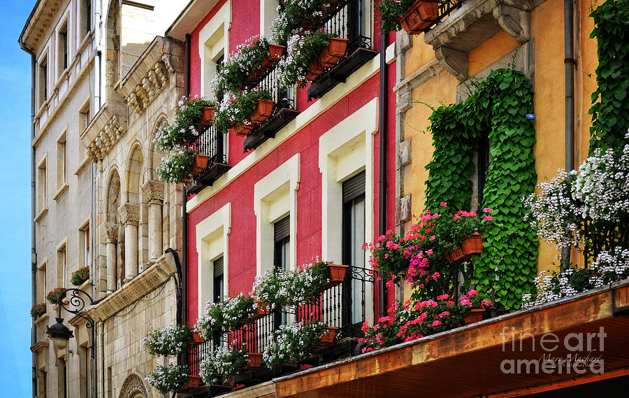 Spain Photograph - Balconies Of Leon by Mary Machare