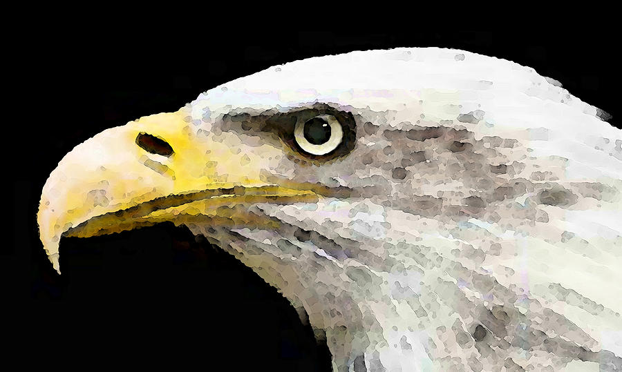 Animal Painting - Bald Eagle By Sharon Cummings by William Patrick
