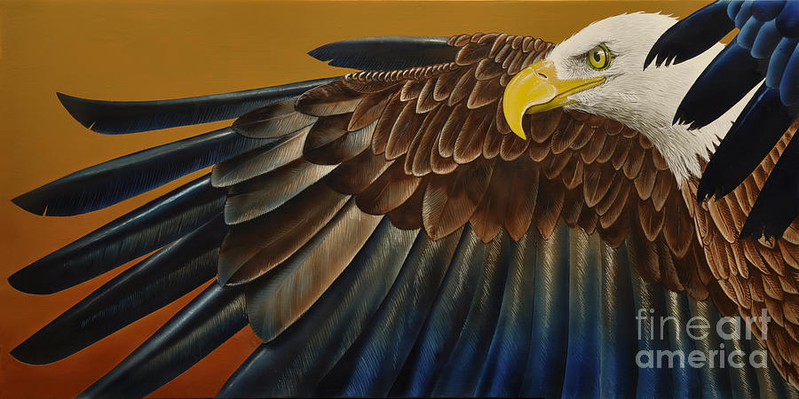 Bald Eagle Painting - Bald Eagle by Jurek Zamoyski