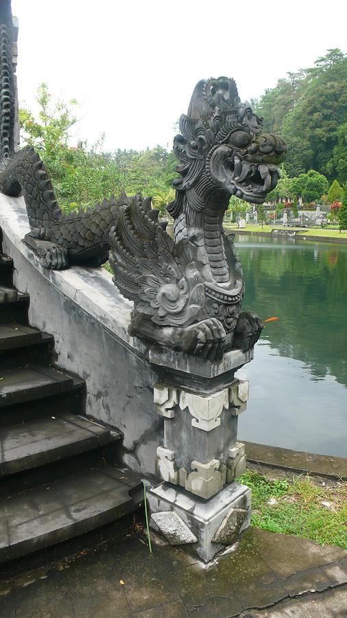 Bali Photograph - Bali dragon  by Jack Edson Adams