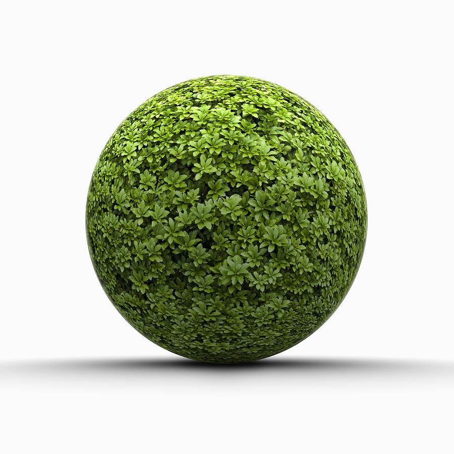 Ball Of Leaves Digital Art by Jorg Greuel