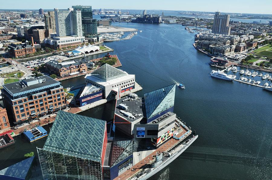 Baltimore Harbor Photograph - Baltimore Harbor by Andrew Dinh