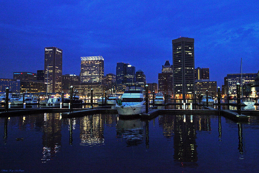 Baltimore MD Skyline at Night by Sheila Kay McIntyre