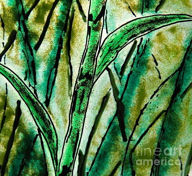 Bamboo Photograph - Bamboo by Gaby Tench