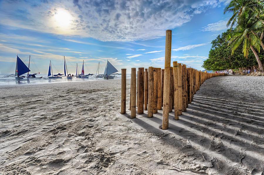 Bamboo Photograph - Bamboo Stripe by Mario Legaspi