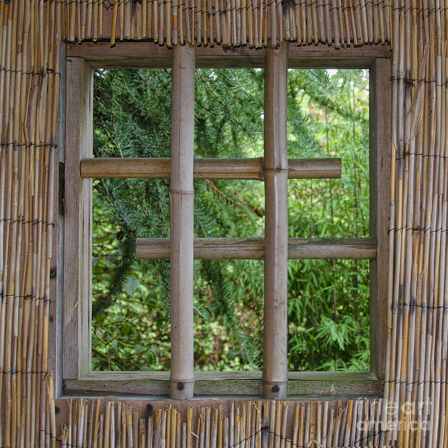 Bamboo Window Photograph By Steev Stamford