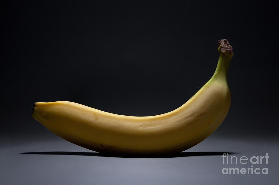 Banana Photograph - Banana In Limbo by Dan Holm