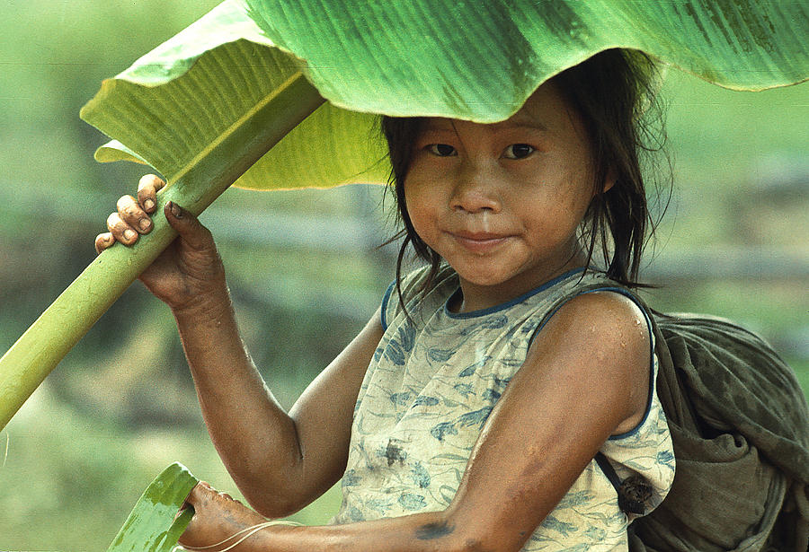 banana-leaf-umbrella-carl-purcell - Days in the life of Aylandil - Photos Unlimited
