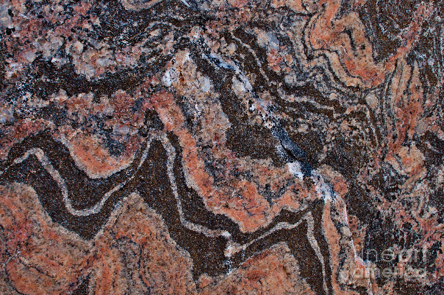 banded gneiss rock photograph by les palenik