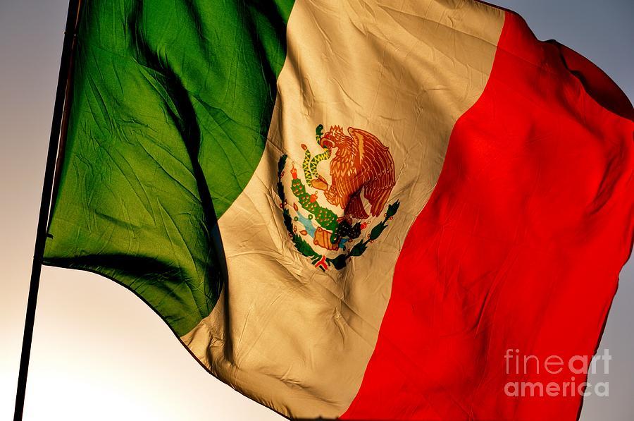 Mexico Photograph - Bandera by Kristine Celorio