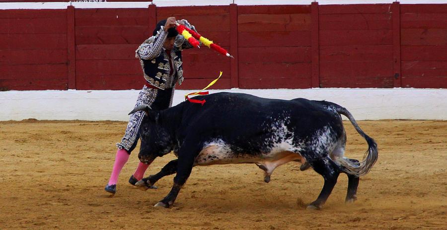 Matador Photograph - Banderillo by Dave Dos Santos
