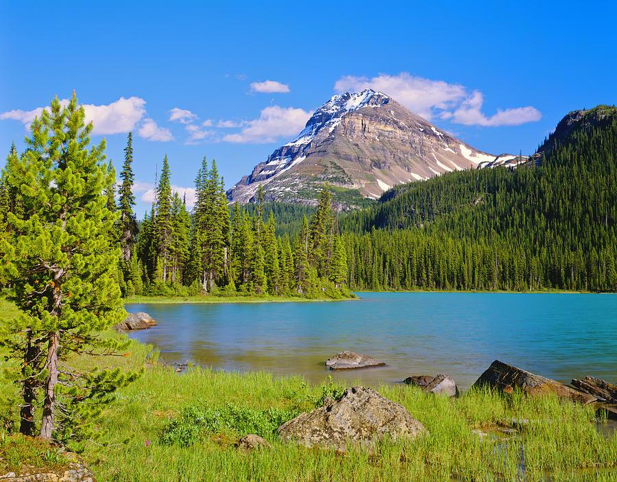 Banff National Park Photograph by Ron thomas