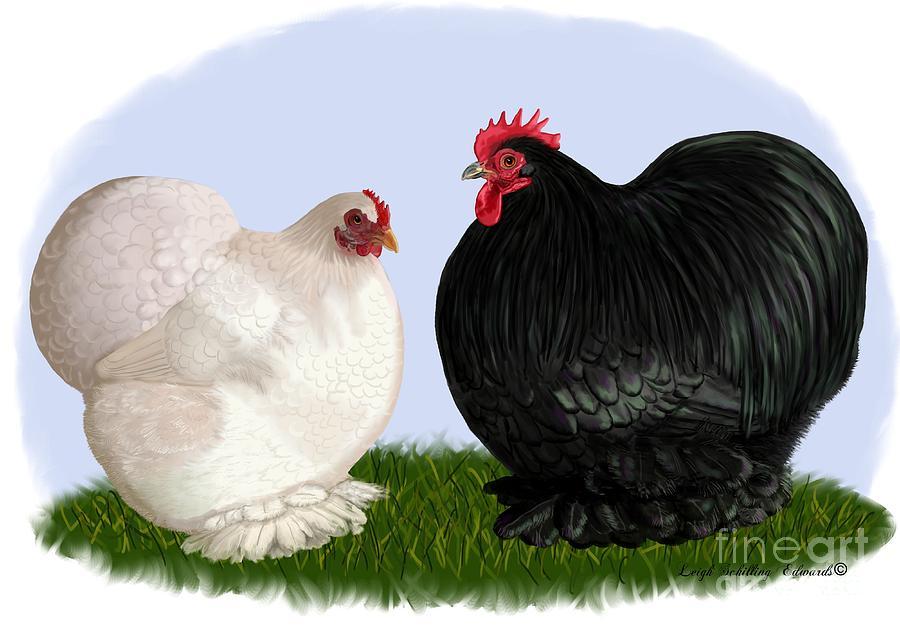 Long Beach Chickens