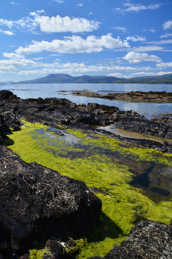Bantry Bay In August Photograph by Phil Darby