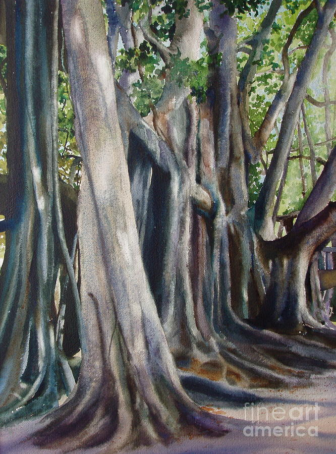 Trunks Painting - Banyan Trees by Karol Wyckoff