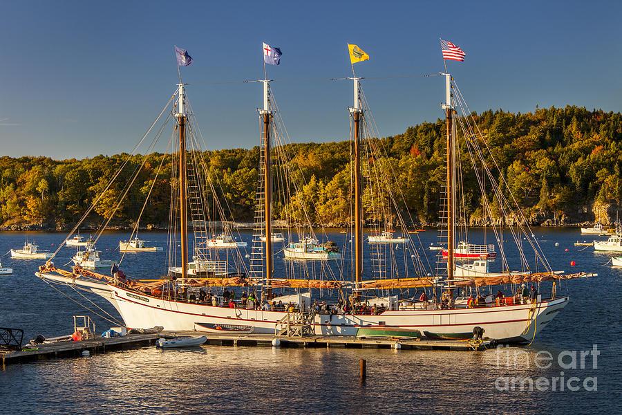 4 Masted Photograph - Bar Harbor Schooner by Brian Jannsen