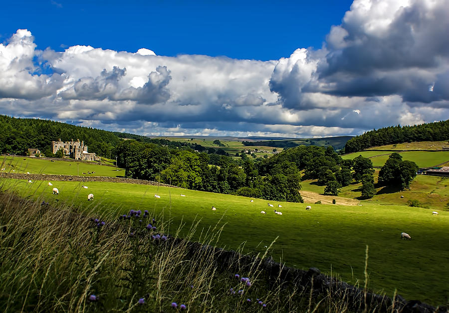 Barden Photograph - Barden Tower by Trevor Kersley