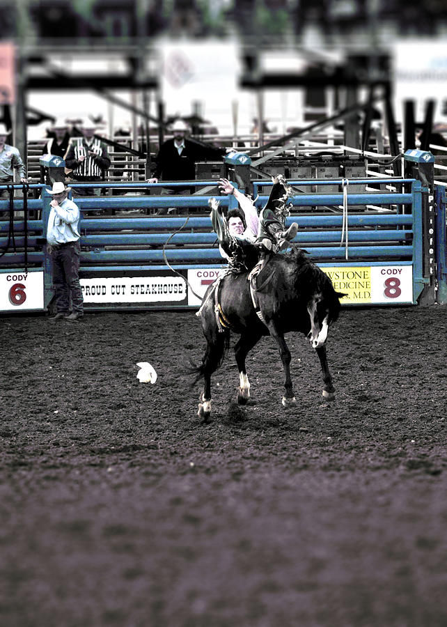 Bareback Bronc Cody Stampede Photograph By Lisa Holland Gillem
