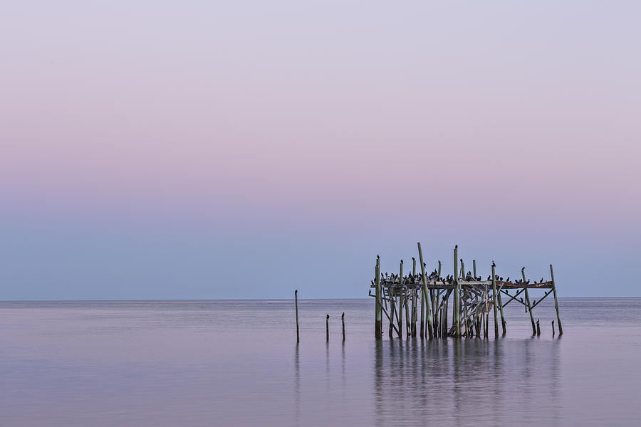 Acrylic Photograph - Barely Standing by Jon Glaser