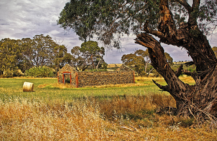 Building Photograph - Barn And Bale In Hindmarsh Vale by Tony Crehan
